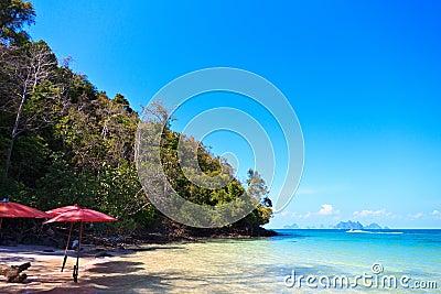 Beach in a Phang Nga Bay
