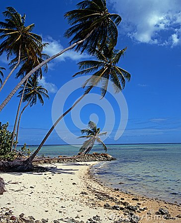 Free Beach, Pigeon Point, Tobago. Stock Photos - 31233903
