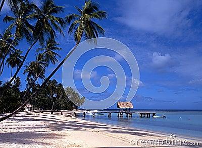 Beach, Pigeon Point, Tobago, Caribbean.