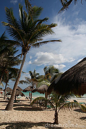 The Beach at Playa del Carmen - Mexico