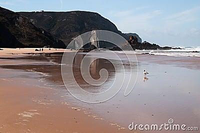 Beach in Portugal with slate rocks