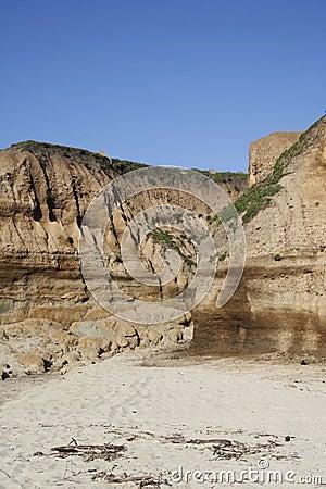 Beach Ravine