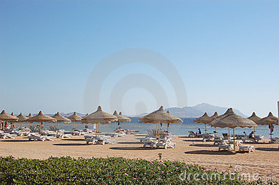 Beach on Red Sea coast, Sharm el Sheikh, Egypt
