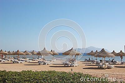 Beach on Red Sea coast, Sharm el Sheikh, Egypt