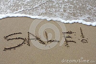 Beach Sale