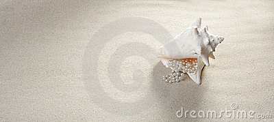 Beach sand pearl necklace shell summer vacation
