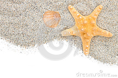 Beach with sand starfish and shell