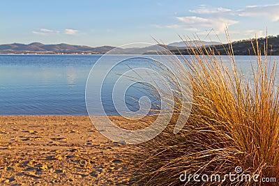 Beach scene, Tasmania