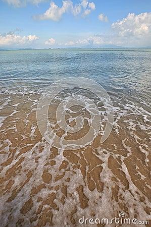Beach of sea