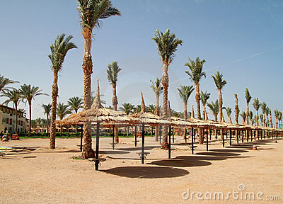 Beach of Sharm el Sheikh