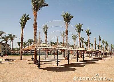 Beach of Sharm el Sheikh