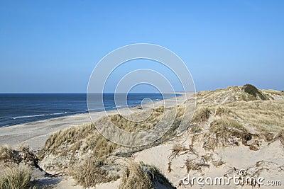 Beach, shoreline