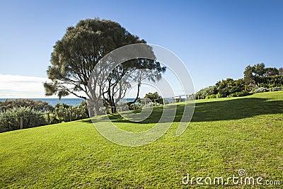 Beach side park