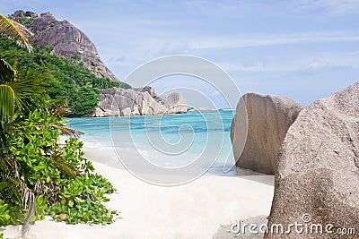 Beach in sunlite