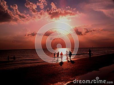 Beach Sunset #5