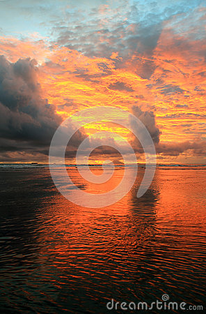 Free Beach Sunset Royalty Free Stock Photo - 53426225
