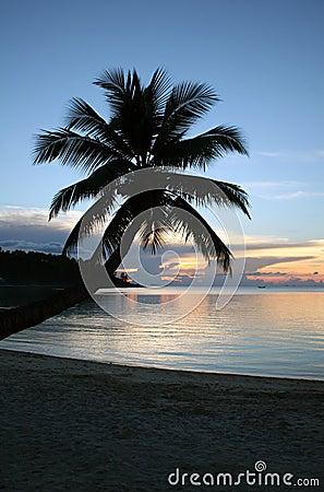 Beach Sunset - Relaxing