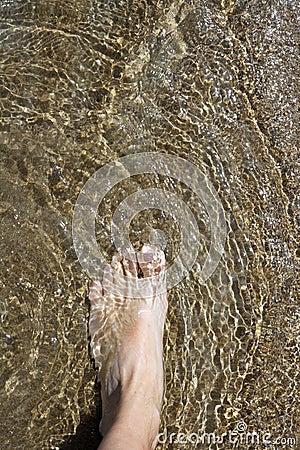 Beach tourist feet walking on shore shallow water