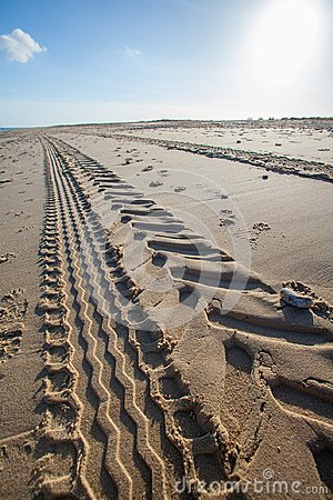 Free Beach Tractor Tire Track In Sand. Perspective And Vanishing Poin Stock Photo - 109427240