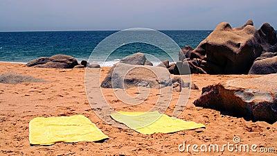 Beach and tropical seaa