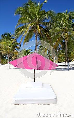 Beach tropical umbrella mattress palm trees