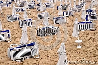 Beach umbrellas in rows