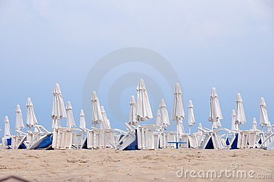 Beach umbrellas in rows
