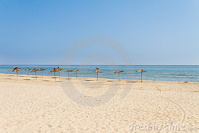 Beach umbrellas on seaside