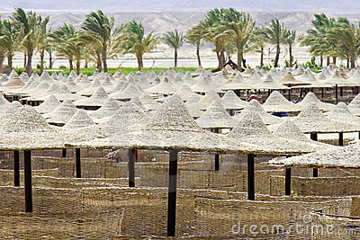 Beach umbrellas and sunbeds in Egypt