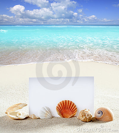 Free Beach Vacation Sand Pearl Shells Snail Blank Paper Stock Images - 20039044