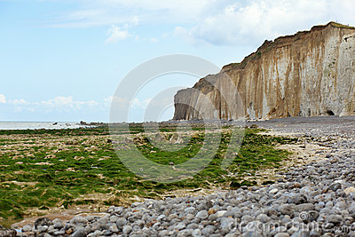Beach with weeds and cliffs in Normandy