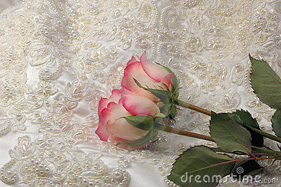 Beaded satin and a roses