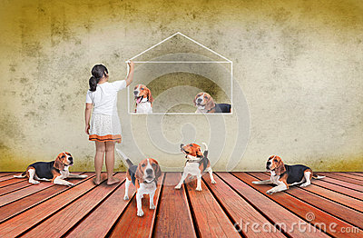 Beagle dog and girl on wood terrace