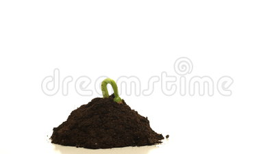 soil degridation Generating three centimeters of top soil takes 1,000 years, and if current rates of degradation continue all of the world's top soil could be gone within 60 years, a senior un official said rome .