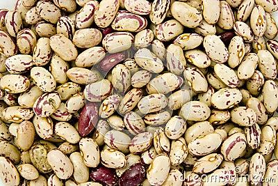 Beans 10