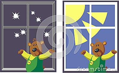 Bear color 07