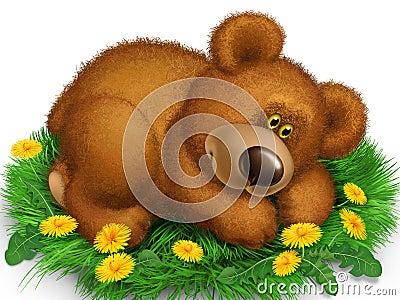 Bear on the grass