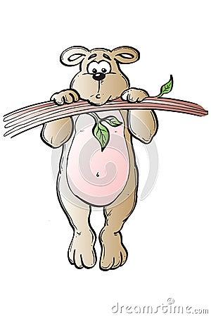 Free Bear Hanging Around Stock Images - 516864