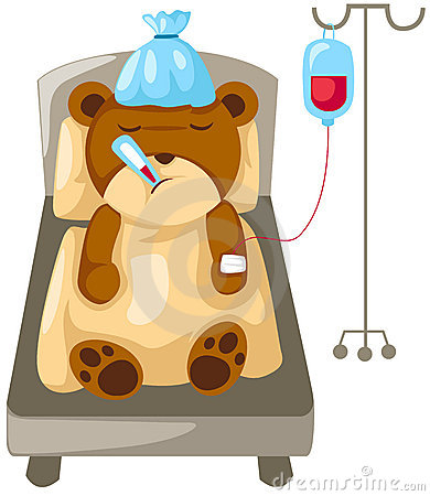 Bear in hospital bed