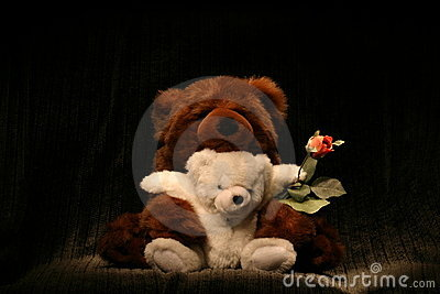 Bear Hug Rose