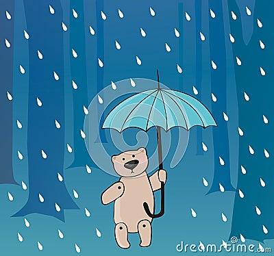 Bear in the rain