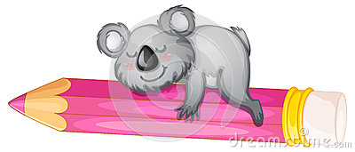Bear sleeping on pencil
