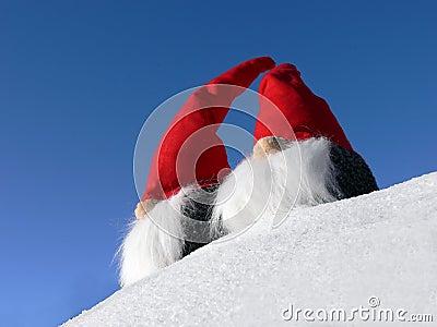 Bearded Santas on Snow