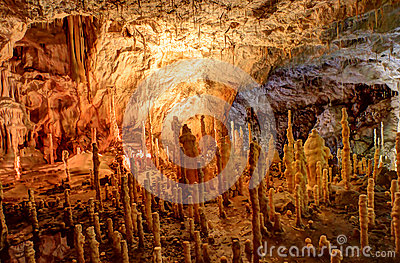 Bears  Cave, Romania