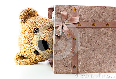Bears doll on white background