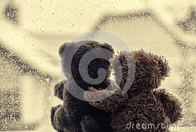 Bears in love s embrace, sitting in front of a window