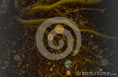 Beatiful decorated christmas tree branches with shining balls in munich Stock Photo