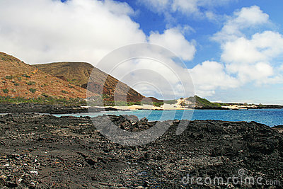 The beatiful shoreline of the Galapagos Islands