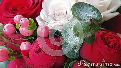 Beau bouquet lumineux aux fleurs rouges Roses juteuses de Bourgogne et baies roses de Saint-Jean-des-Pires dans le bouquet d'auto clips vidéos