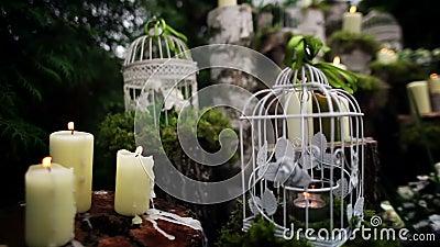 Beau décor de mariage avec des bougies, rondins de bouleau banque de vidéos